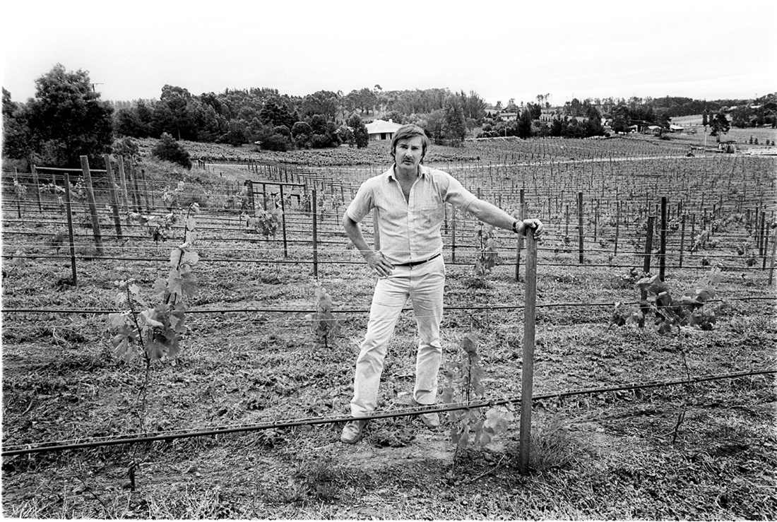 BCJ in the Tiers Vineyard in 1980 (photo Milton Wordley)