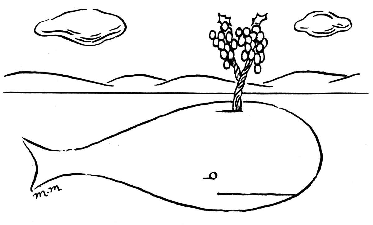 Cartoon of Whalebone Vineyard by Matthew Martin