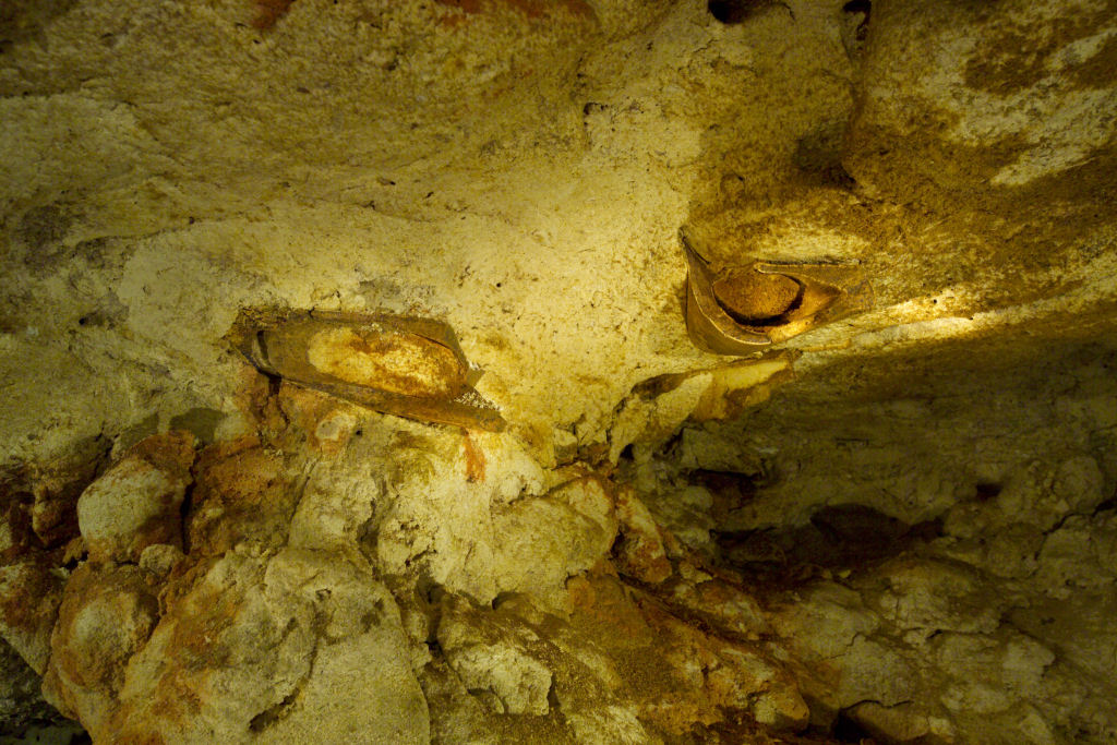Whale bone in cave beneath the vineyard (photo by Milton Wordley)